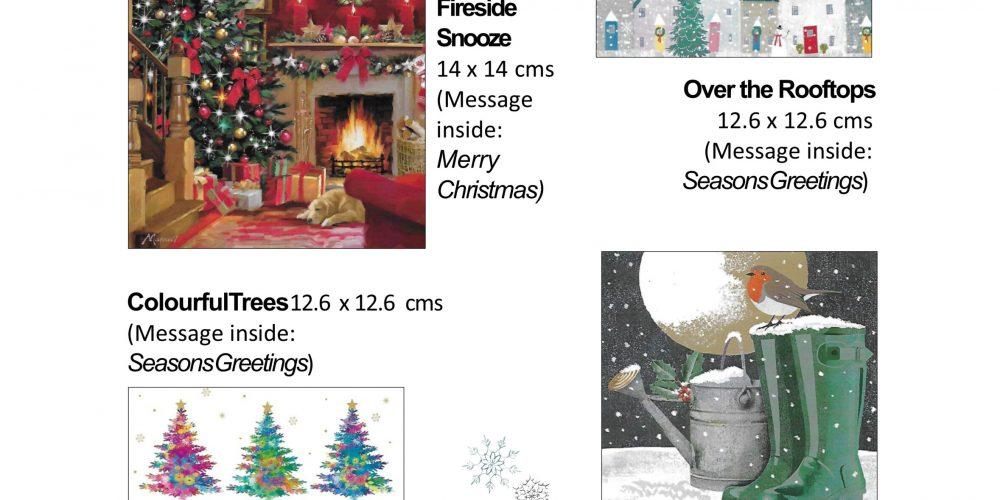 xmas order sheet snow 2021 (3)